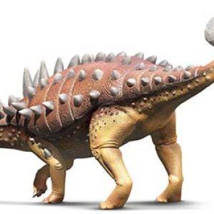 Euplocephalus – dinosaurio herbivoro