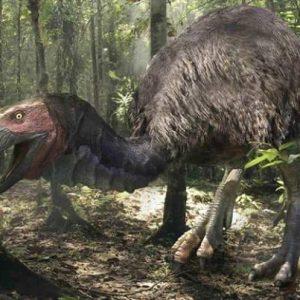 Gastornis – dinosaurio herbivoro