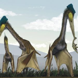 Quetzalcoatlus – dinosaurios voladores