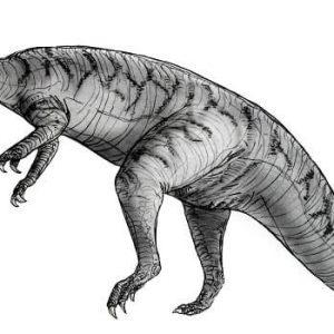 Yimenosaurus – dinosaurio herbivoro