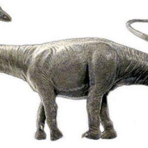 barosaurus – dinosaurio gigante