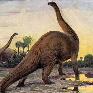 brontosaurus – dinosaurio herbivoro
