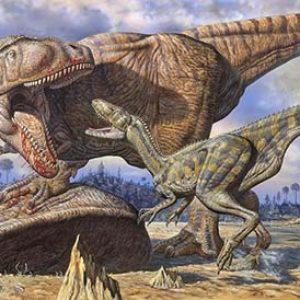 carcharodontosaurus vs abelisaurus