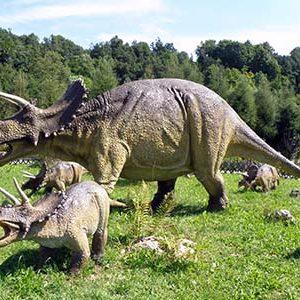 familia del triceratops