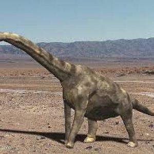 gigantosaurus – dinosaurio herbivoro