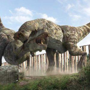 tiranosaurio rex vs tiranosaurus rex